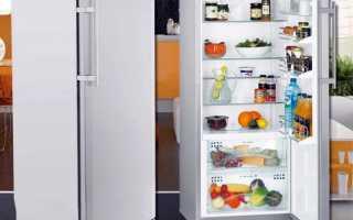 Холодильник без морозильной камеры: ТОП-12 лучших моделей + плюсы и минусы такого решения