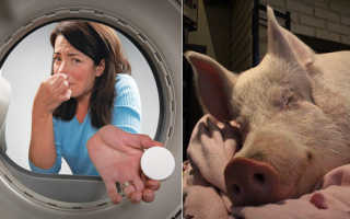 Неприятный запах в стиральной машине: как избавиться + профилактика